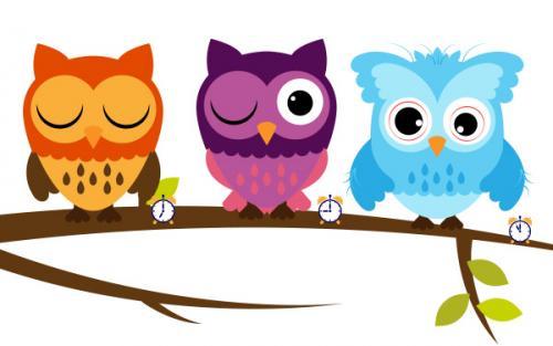 sleep-owl
